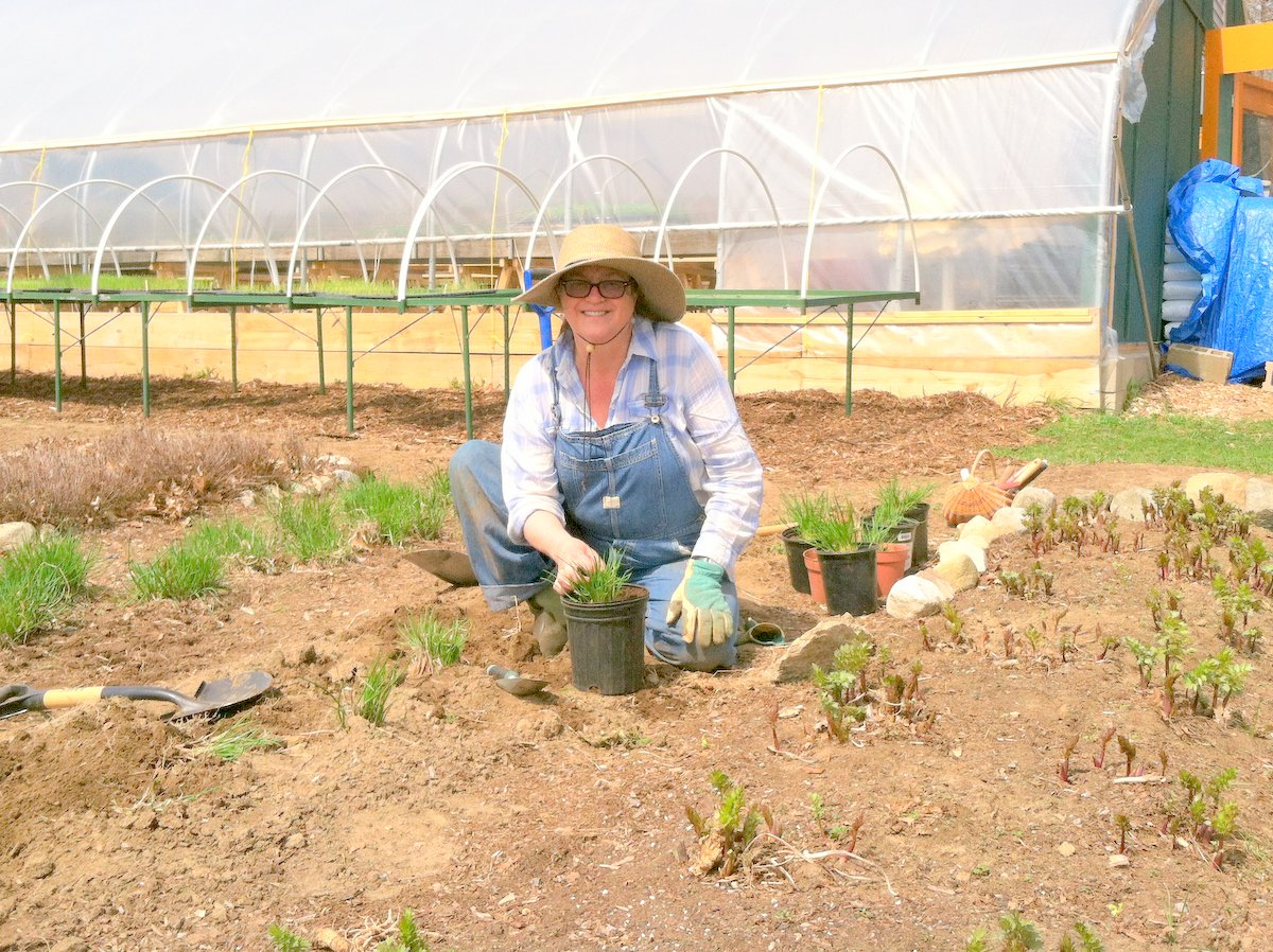 Nancy Conklin-Stone planting the Herb Garden