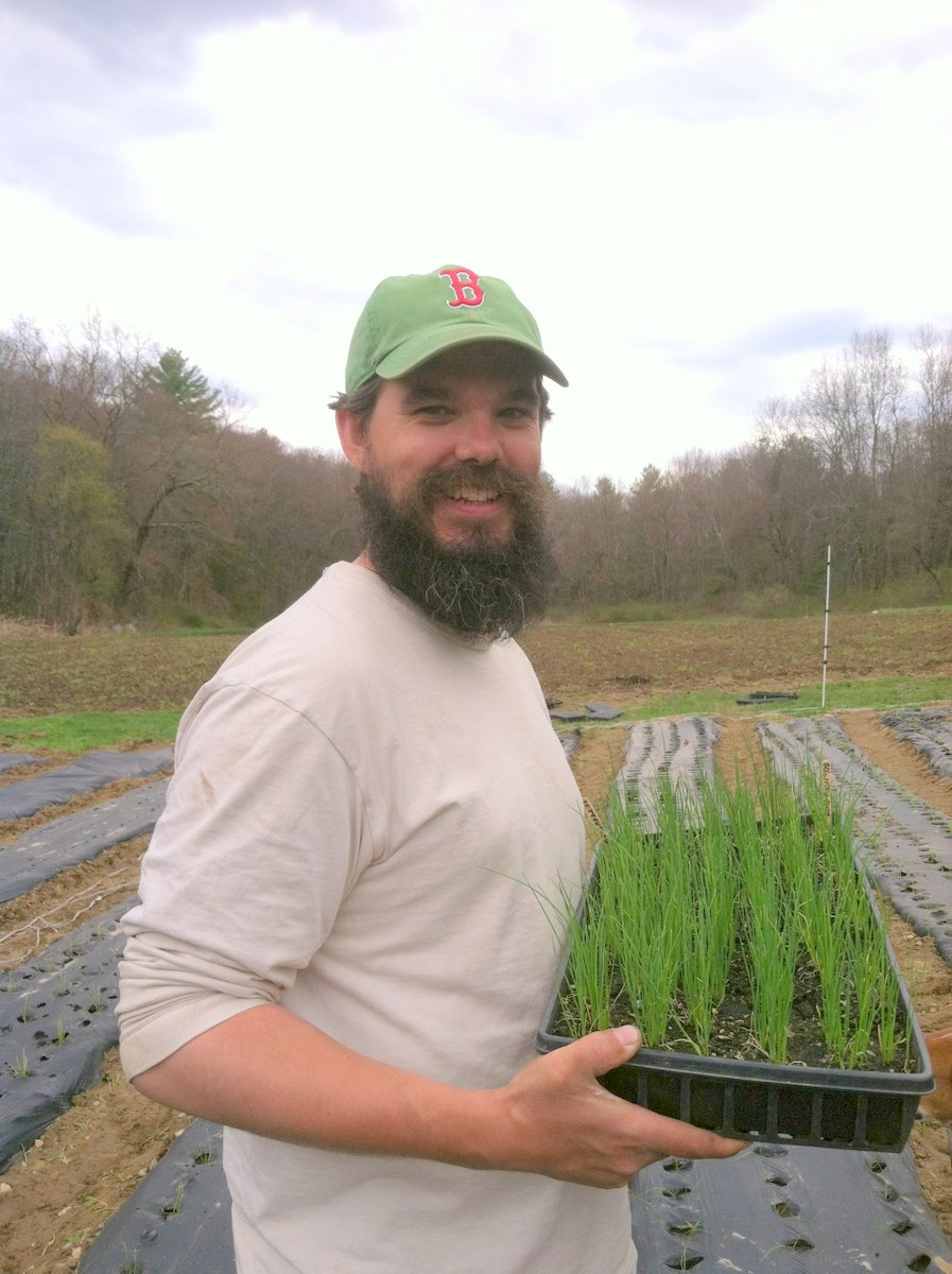 Plants are longer than the beard at this point in the season