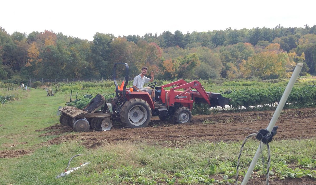 Preparing the beds for cover crops