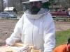 Beekeeper Lawson Frazier