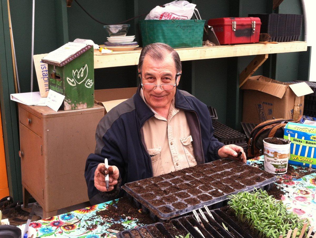 Sal Lampis seeding