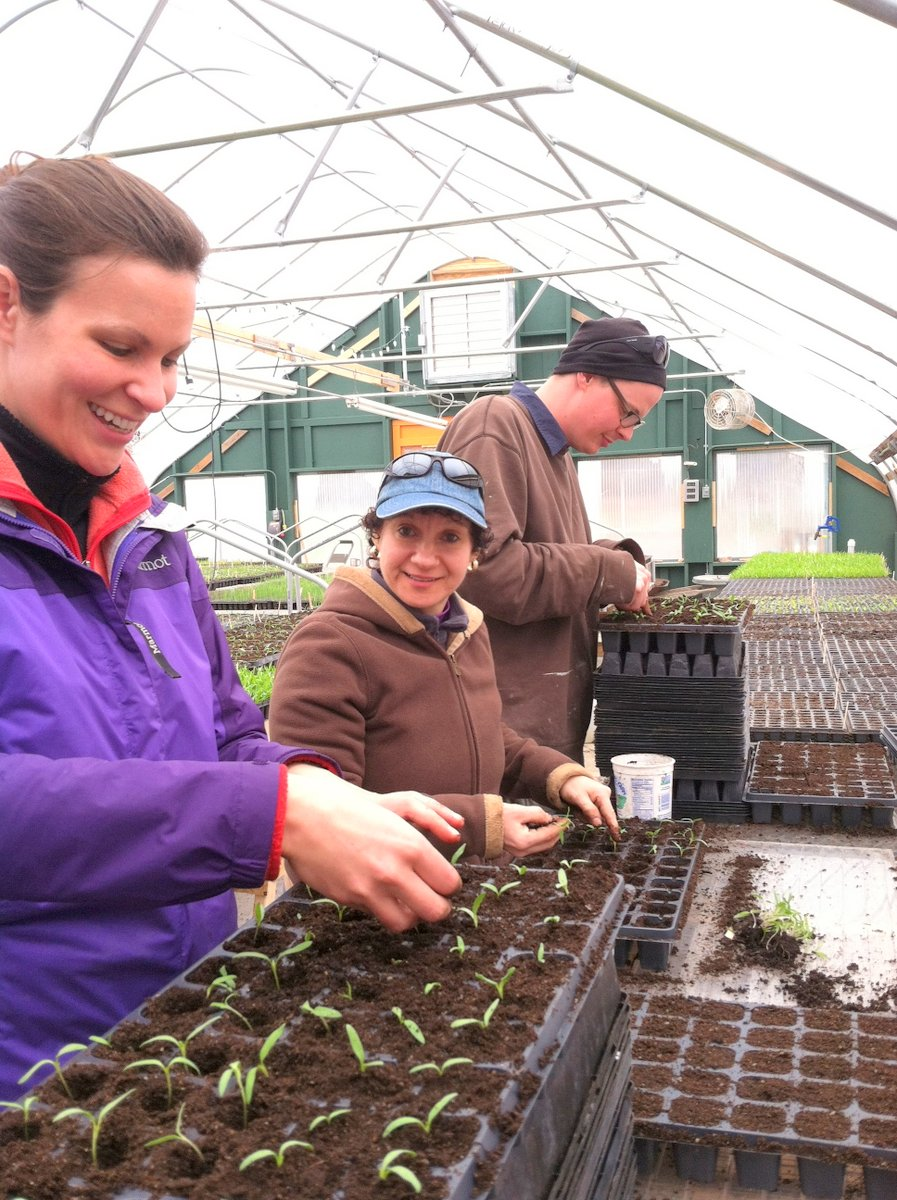 Sharers seeding
