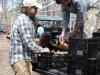 Unloading seed potatoes