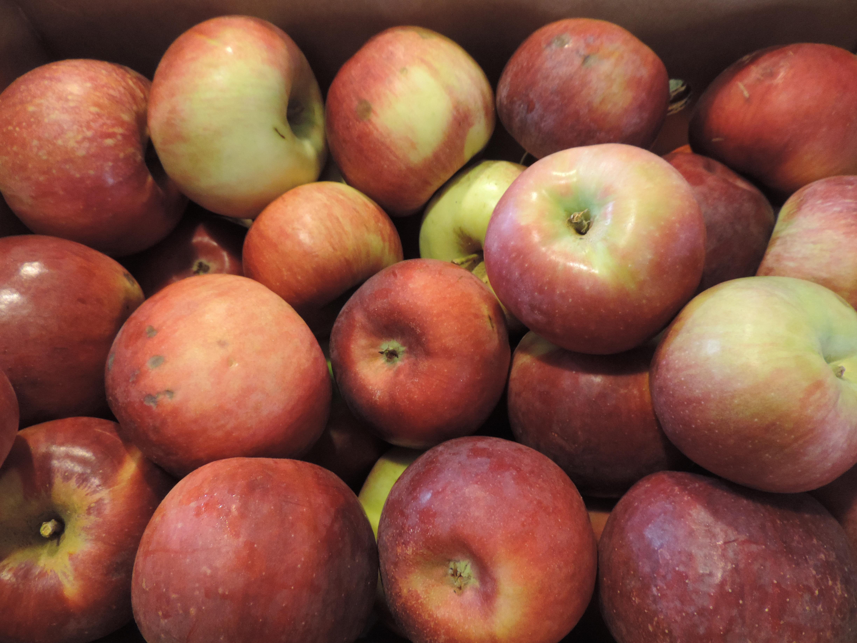 2021 Fruit Share
