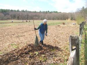 Long-time work for sharer Diane Kelzer working in the flower garden
