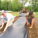 Laying bio-degradable mulch