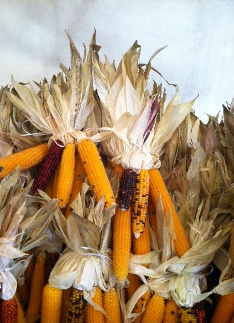 Mark Your Calendars for the fall Harvest Festival!