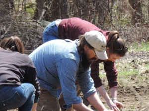 Seth plants potatoes with sharers and volunteers