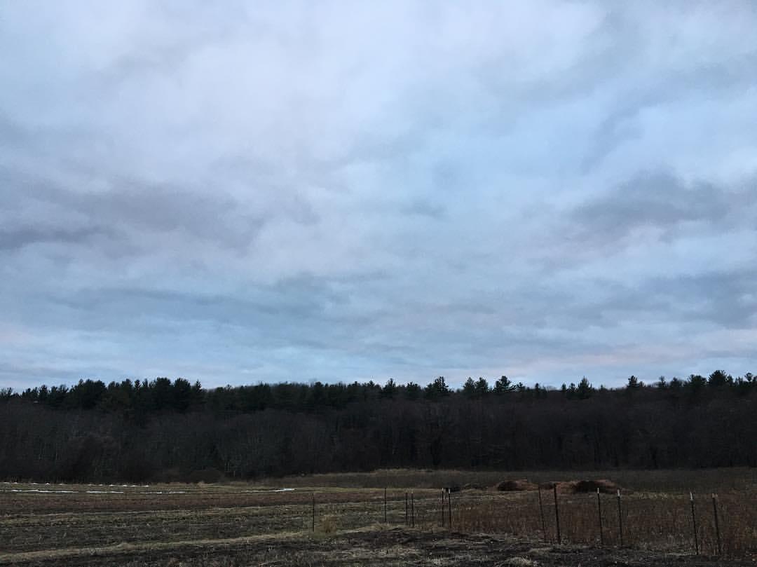The farm asleep in January