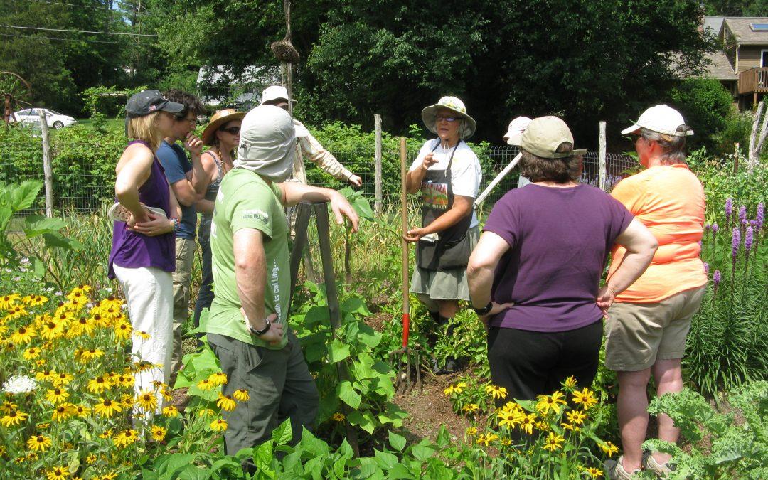 Learn Organic Gardening with Kathy Huckins