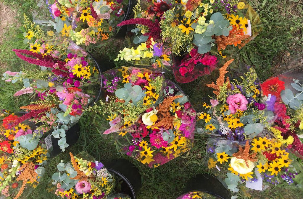 All About Our New Flower Share