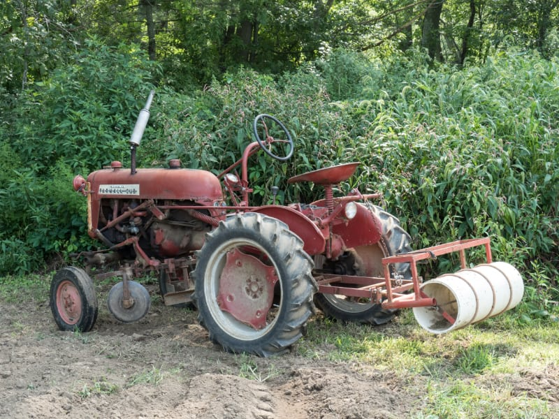 Why We Plant Cover Crops