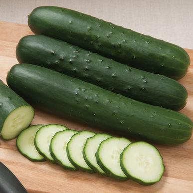 Cucumber: SV4719CS