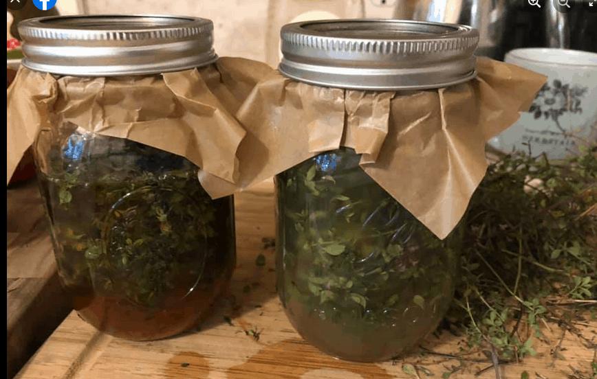 Herb-Infused Vinegar Workshop